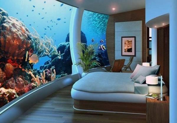 морские аквариумы